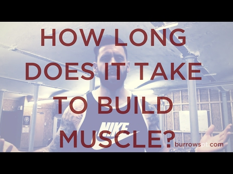 how-long-does-it-take-to-build-muscle?