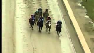 Laurel Park 12/03/14 race 3
