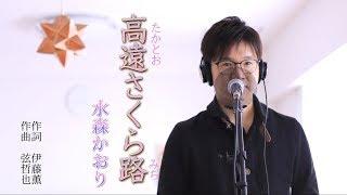 高遠さくら路 / 水森かおり cover by Shin