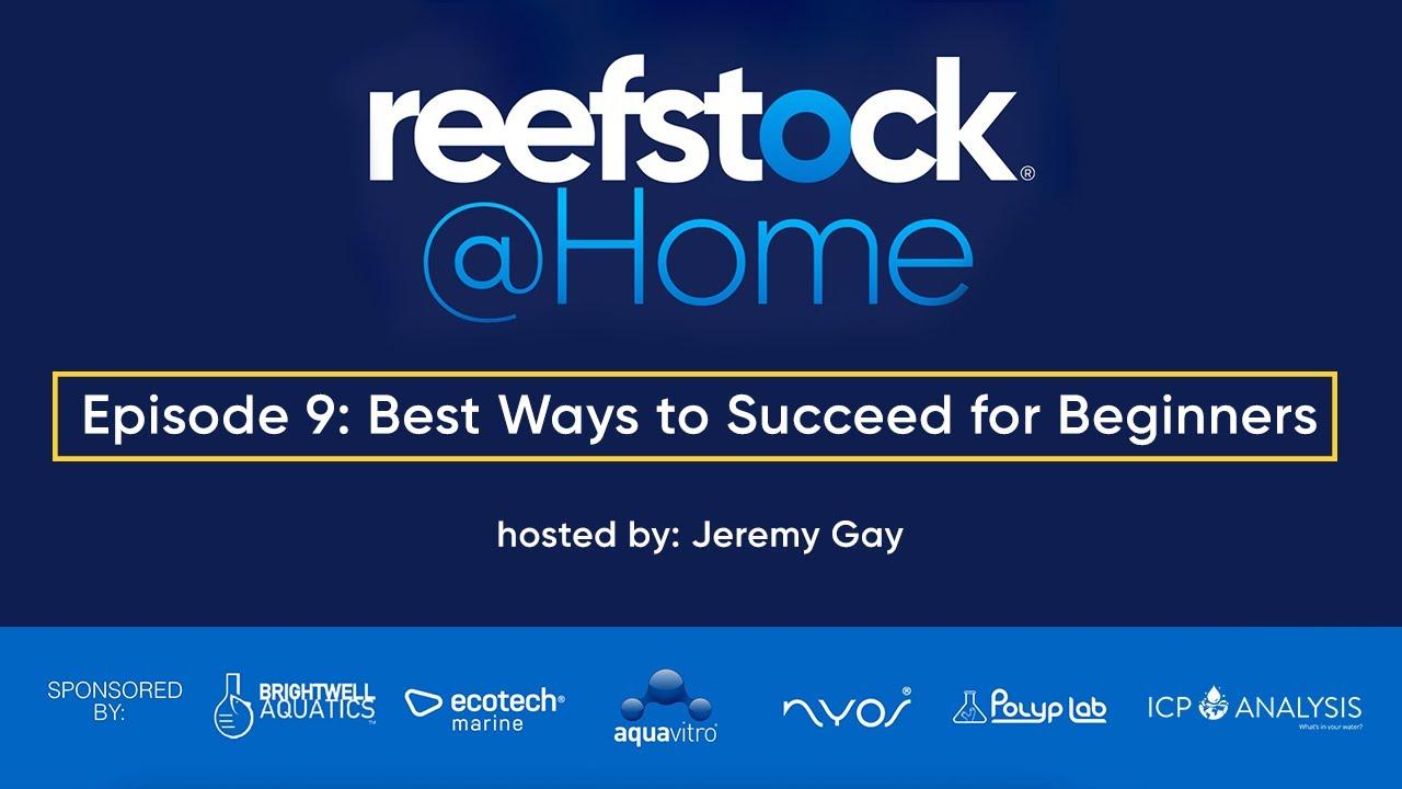 ReefStock @ Home Episode 9 - Best Ways to Succeed for Beginners