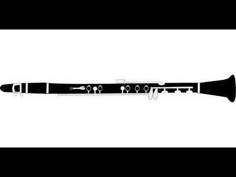Ernst Ottensamer - Clarinet Concerto n. 2 - First Movement