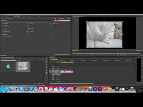 How to Move Photos/Videos Around in Adobe Premiere Pro