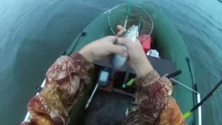 Рыбалка на Волге - Русская рыбалка