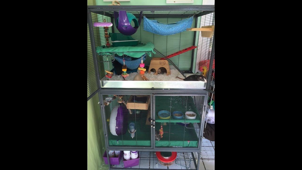 rat cage tour youtube. Black Bedroom Furniture Sets. Home Design Ideas
