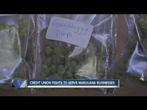 Credit Union fights to serve marijuana businesses