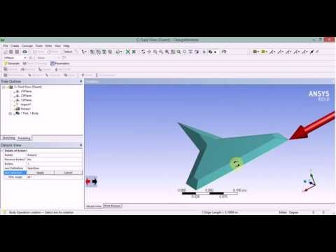 Supersonic Double Delta Wing Simulation (Ansys-Fluent)