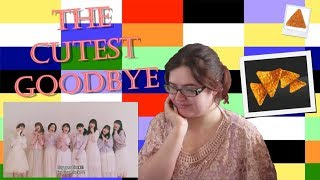 The Cutest Goodbye? - Juice=Juice 'goodbye & good luck' REACT! (ジュースジュース PV 反応する!) ASMR Edit