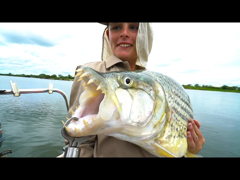 African River MONSTERS