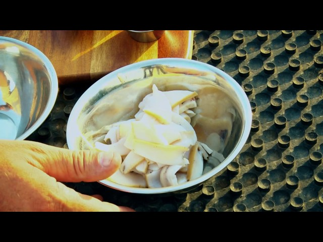 Hunting the Menu 2017 Episode 4 - Abalone and wild pig