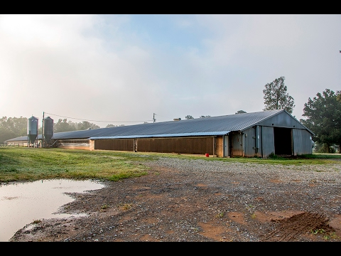 Chatham County NC Chicken Farm For Sale