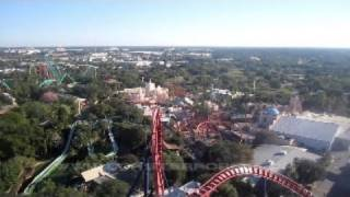 SheiKra Front Seat on-ride HD POV Busch Gardens Tampa