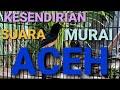 Kesendirian Suara Murai Batu Aceh  Mp3 - Mp4 Download
