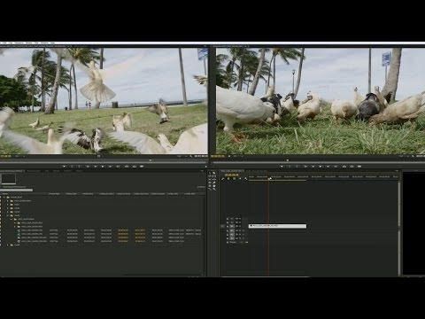 Adobe Premiere Pro CC uses NVIDIA GPUs for Debayering and Smoother 4K Workflows