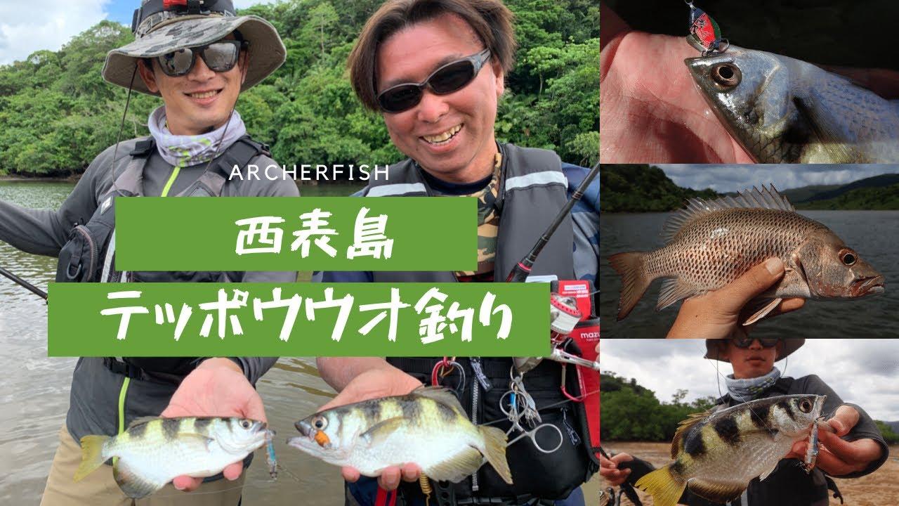 【沖縄ルアー】西表島のテッポウウオ釣り。Archerfish