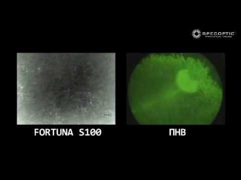 Тепловизионный прицел FORTUNA - YouTube