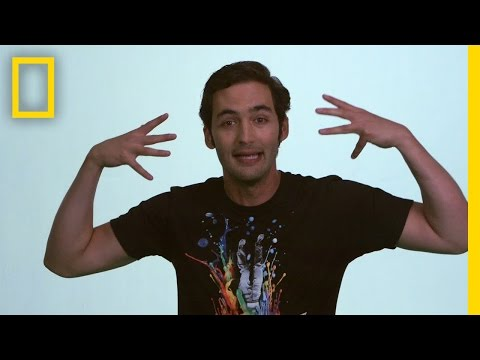 Jason Silva on Money | Brain Games