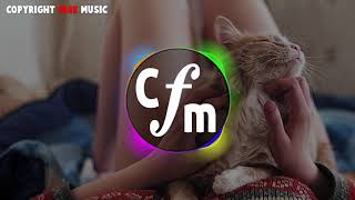 Fredji   Happy Life   Copyright Free Music CFM