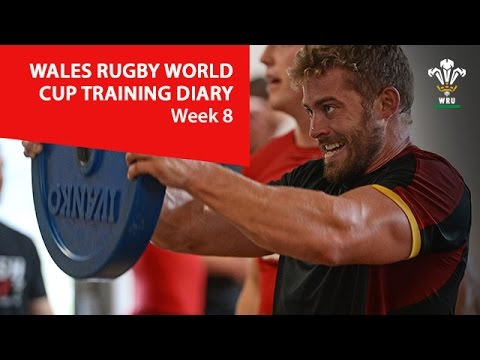 WEEK 8: Wales Rugby World Cup training diary | WRU TV