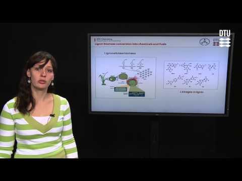 Lignin Biomass Conversion