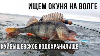 ИЩЕМ ОКУНЯ на ВОЛГЕ Ульяновск Куйбышевское водохранилище