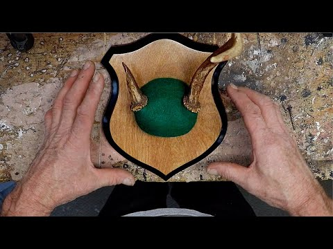 DIY: How To Make An Antler Plaque