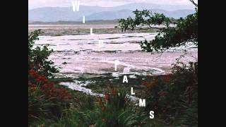Wild Palms - To The Lighthouse