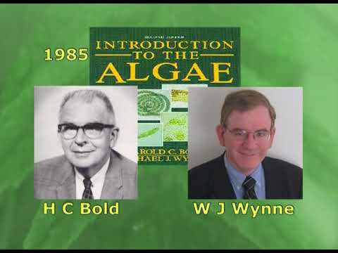 Classification of Algae -3.mp4