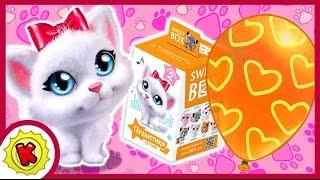 КОТЯТА. Пушистики. 😺🐱😸 СВИТ БОКС. Cats. Sweet Box. Киндер Сюрприз. Kinder Surprise.