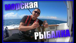Морская рыбалка в Дублине Готовлю Треску на мангале