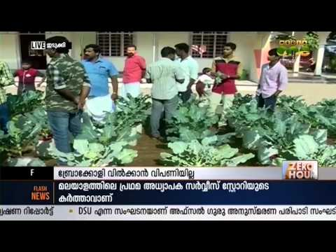 Broccoli Cultivation Done By Youth In Kerala