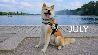 This is the seventh Video of the Month (07/12). Have a nice July! A...