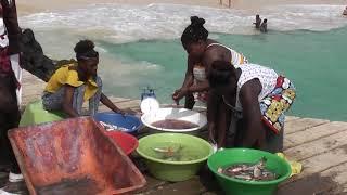 Cape Verde Islands Sal Santa Maria