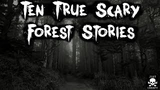 10 True Scary Forest Stories | Compilation