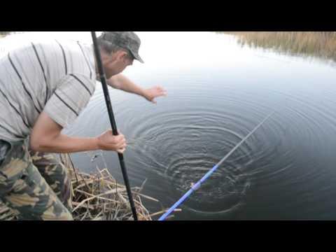погребняки рыбалка