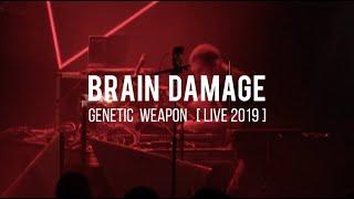 Brain Damage - Genetic Weapon (ft. Tena Stelin) [ LIVE ]