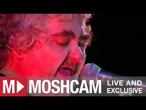 Daniel Johnston - Living Life | Live in Sydney | Moshcam