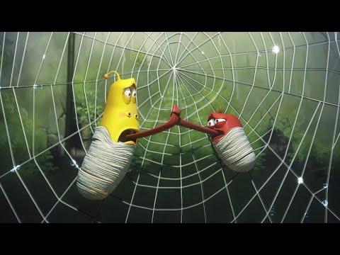 Spider - Larva