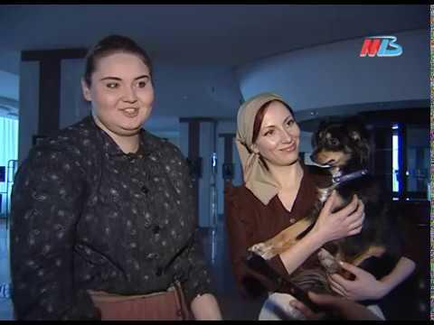 Волгоград Ворошиловский район