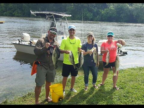 Roanoke River Striper Fishing in 4K