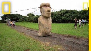 Scientists Make Easter Island Statue Walk