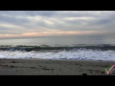 BEACH SOUND - Lone Man Fishing - 1 Hour Relaxing Sound