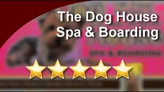 Pet Grooming Miami Beach The Dog House Spa & Boarding Miami Beach          Outstanding         ... Thumbnail