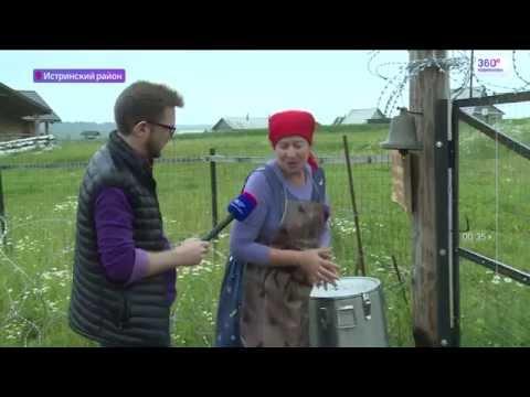 Фермер-мультимиллионер Герман Стерлигов