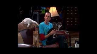 The Big Bang Theory - Zazzles