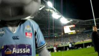 The Adventures Of Jet Frichot : NSW State Of Origin Mascot