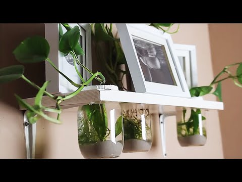 HOW TO: Hang on the wall AQUARIUM TUTORIAL