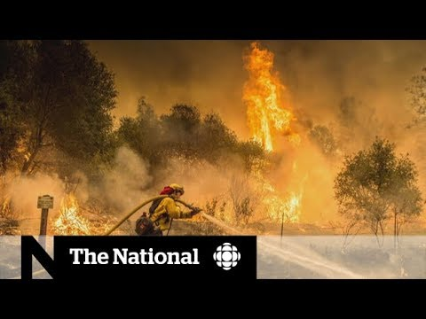 Fires in northern California leave several dead