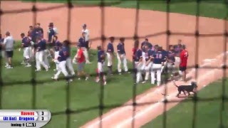 Blue Dragon Baseball vs. Coffeyville (Region VI Game 3)