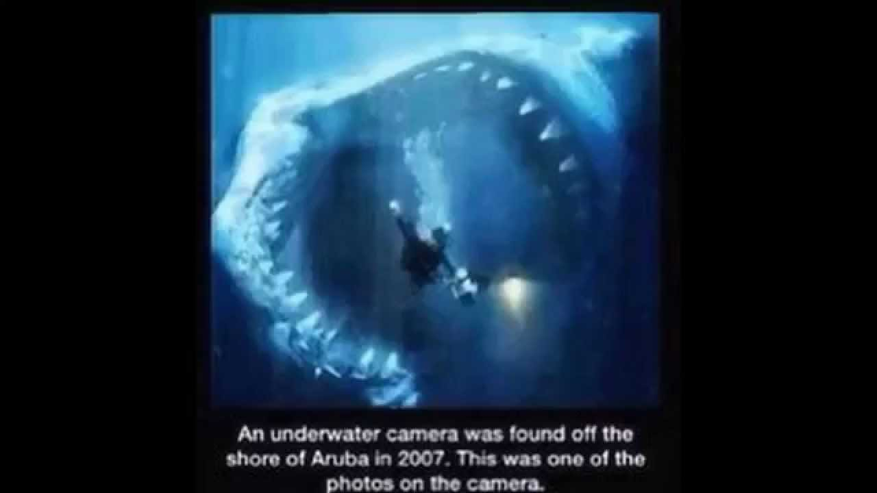 20 scary images that will keep you out of the ocean youtube publicscrutiny Images