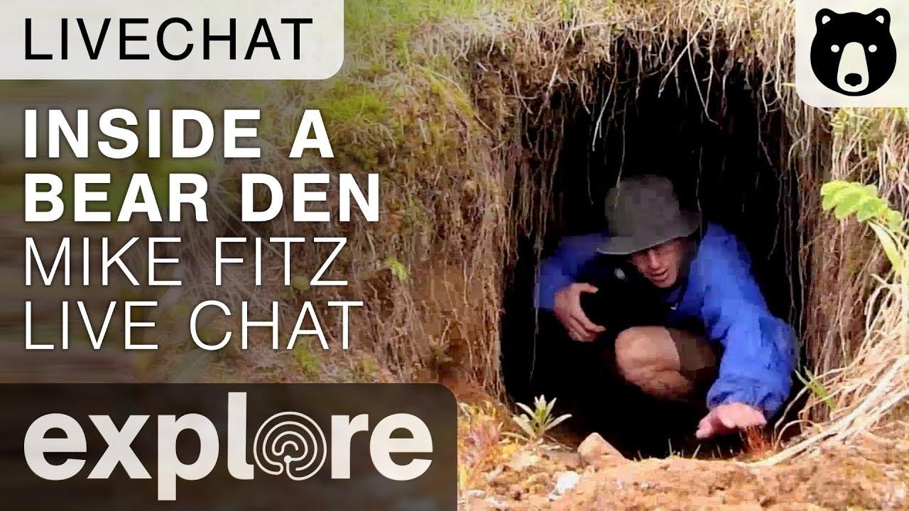 5e62767b Inside a Bear Den - Mike Fitz Brown Bear Live Chat 11/08/17 - YouTube